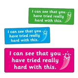You Have Tried Really Hard Stickers (56 Stickers - 46mm x 16mm)