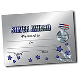 Customised Silver Award Certificate - A5
