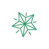 Star Stamper - Green Ink (10mm)