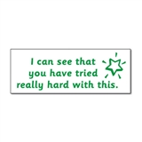 'You Have Tried Really Hard With This' Stamper - Green Ink (38mm x 15mm)