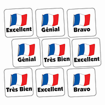 Sheet of 140 Mixed French 16mm Square Stickers
