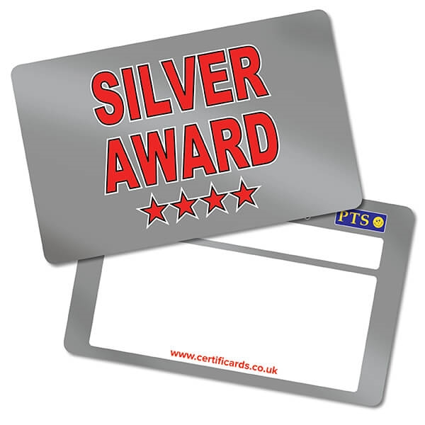 Primary Teaching Services Metallic Silver Award School Certificards x 10