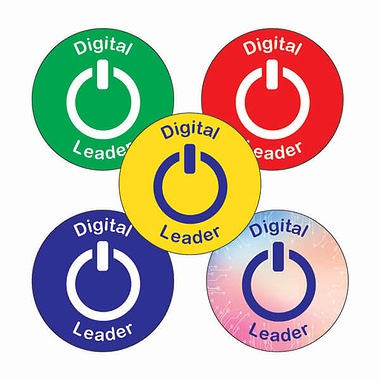Digital Leader Stickers (25mm, Multicoloured x 30)