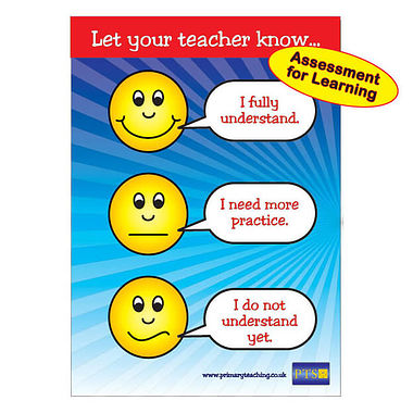 A1 Supersize Plastic Expressions for Understanding Poster