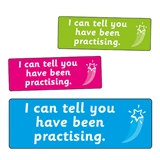You Have Been Practising Stickers (56 Stickers - 46mm x 16mm)