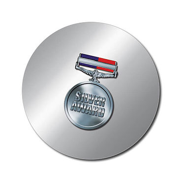 Personalised Silver Award Stickers - Medal (70 per sheet - 25mm)