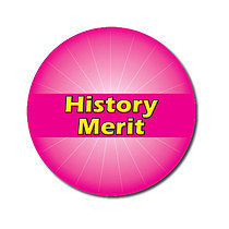 Sheet of 70 Customised Pink History Merit 25mm Stickers