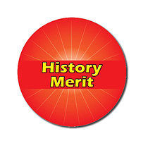 Sheet of 70 Customised Red History Merit 25mm Stickers