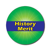 Sheet of 70 Customised 25mm Green History Merit Stickers