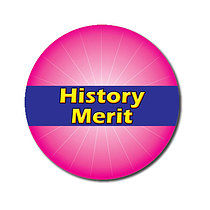 Sheet of 70 Customised 25mm Pink History Merit Stickers