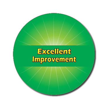 Personalised Excellent Improvement Stickers - Green (70 per sheet - 25mm)