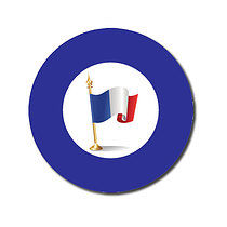 Sheet of 70 Customised Blue French Flag 25mm Stickers