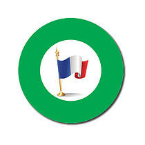 Sheet of 70 Customised Green French Flag 25mm Stickers