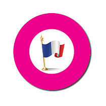 Sheet of 70 Customised Pink French Flag 25mm Stickers