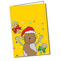 Personalised Pedagogs Cat Christmas Greeting Card