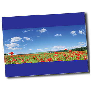 Personalised Poppy Postcard - Blue (A6)