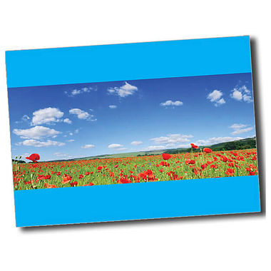 Personalised Poppy Postcard - Cyan (A6)