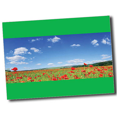 Personalised Poppy Postcard - Gren (A6)