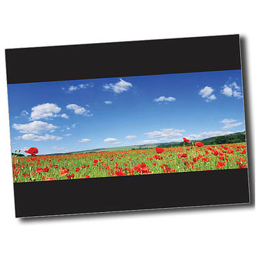 Personalised Poppy Postcard - Black (A6)