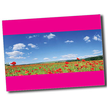 Personalised Poppy Postcard - Pink (A6)