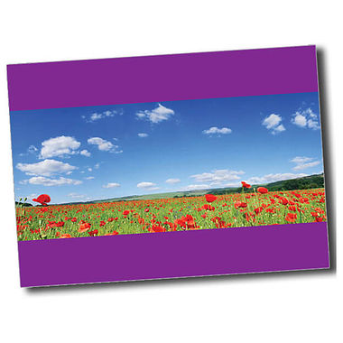 Personalised Poppy Postcard - Purple (A6)