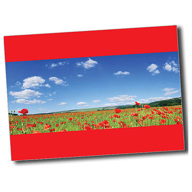 Personalised Poppy Postcard - Red (A6)