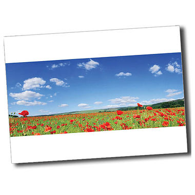 Personalised Poppy Postcard - White (A6)