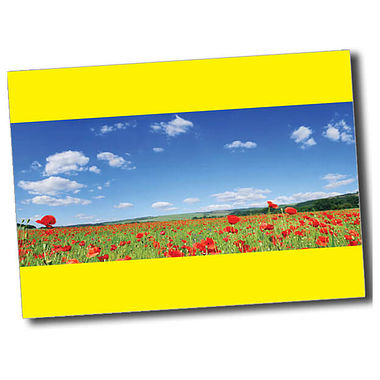 Personalised Poppy Postcard - Yellow (A6)
