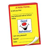 50 Page 'Good Behaviour' Grin A6 Note Home Praisepad