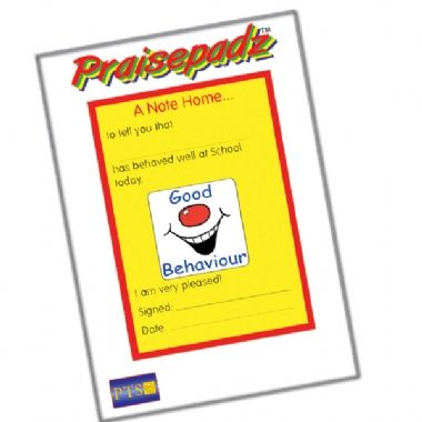 50 Page 'Good Behaviour' Grin A6 Note Home Praisepad