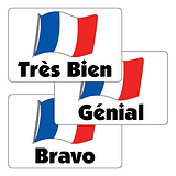 French Flag Stickers - Mixed Wording (32 per sheet - 46mm x 30mm)