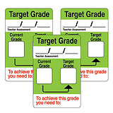 Writeable Current & Target Grade 46mm x 30mm Stickers x 32