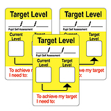 Current & Target Level Stickers - Writeable (32 Stickers - 46mm x 30mm)