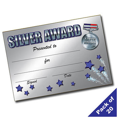 Pack of 20 Silver Award A5 Certificates