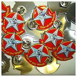 Pack of 10 Star Of The Week Enamel Badges