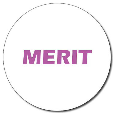 Customised Merit Stamper - Purple Ink (25mm)