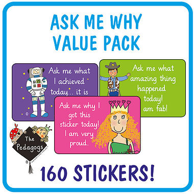 Ask Me Why Stickers by Pedagogs (46mm x 30mm) 160 in a pack