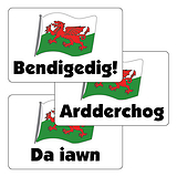 Welsh Wording Stickers - Flag (32 Stickers - 46mm x 30mm)