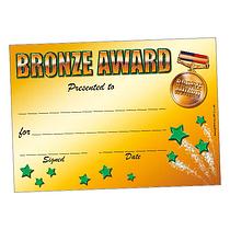Bronze Award Certificates (20 Certificates - A5)