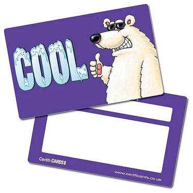 Cool Polar Bear CertifiCARDS (10 Cards - 86mm x 54mm)