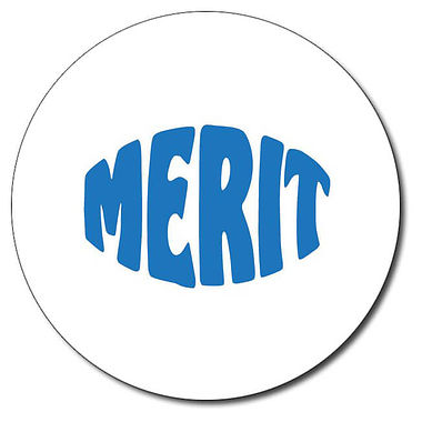 Customised Merit Stamper - Blue (25mm)