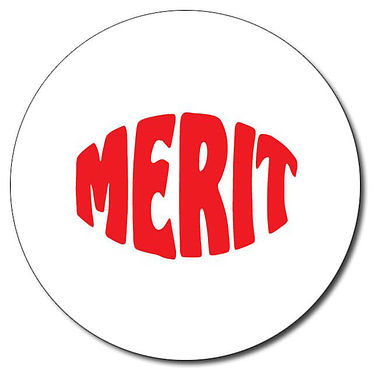 Customised Merit Stamper - Red (25mm)