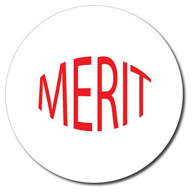 Customised Merit Stamper - Red Ink (25mm)