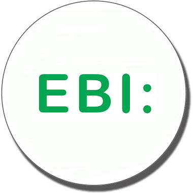 Even Better If 'EBI' Stamper - Green Ink (25mm)