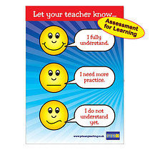 Expressions for Understanding Plastic Poster  (A1 Sized)