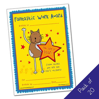 Fantastic Work Award Certificates - Pedagogs Cat (20 Certificates - A5)