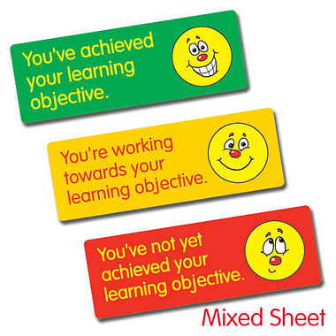 Learning Objective Stickers (56 Stickers - 46x16mm)