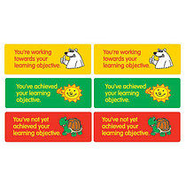 Learning Objective Stickers - Mixed Design (56 Stickers - 46mm x 16mm)
