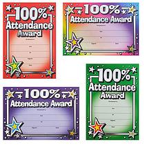 Metallic 100% Attendance Award Certificates (20 Certificates - A5) Brainwaves