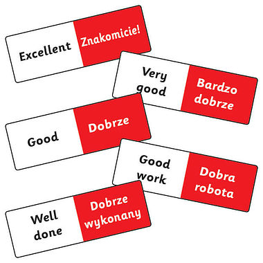 Mixed Polish Phrases Stickers (16 Stickers - 59mm x 20mm)